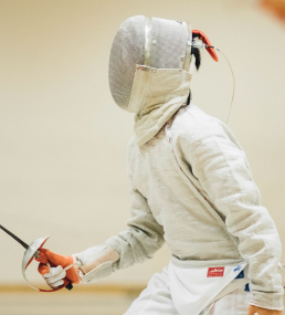 fencing whatsnew